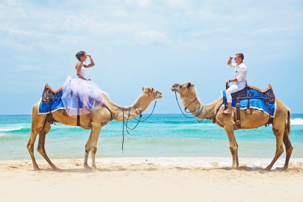Wedding venue Dubai - Weddo Agency